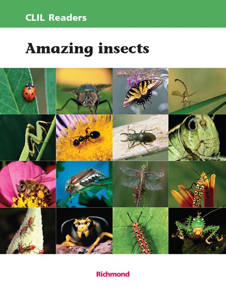 Amazing_Insects_g